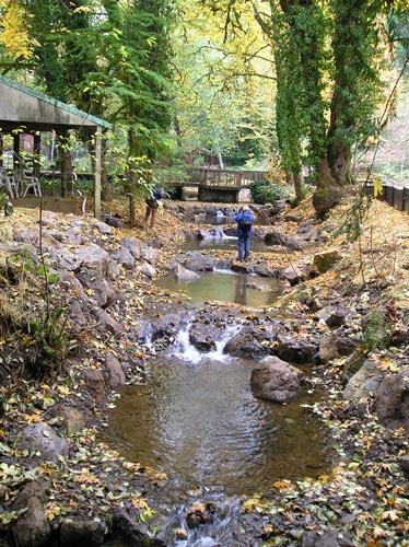 Murtaugh creek fish passage waterways consulting inc for Tualatin river fishing