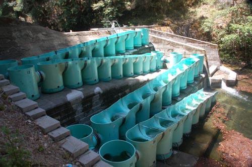 Camp pico blanco fish ladder and dam retrofit waterways for Dam fish count