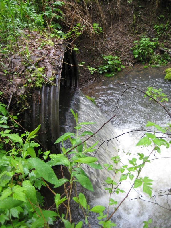 downstream end of culvert 271