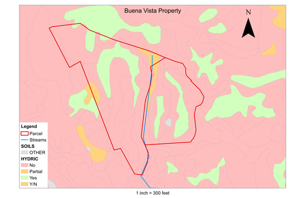 15 015 Buena Vista Field Map NoOutletPts Web